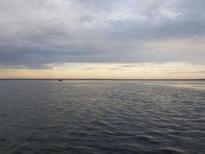 рыбалка в лиманах темрюка